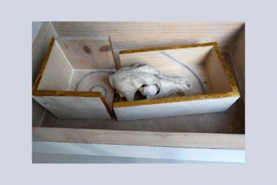SECCION DORADA C - 44,3x26,7x11,7 cm - Reciclaje y Ensamblado - Serie Poemas Visuales - Proyecto S.O.S.tenible - 2012 - Gata de Gorgos.