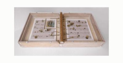 VIEJA MELODIA D - 46,5x85,8x13 cm - Reciclaje y Ensamblado - Serie Poemas Visuales - Proyecto S.O.S.tenible - 2012 - Gata de Gorgos.