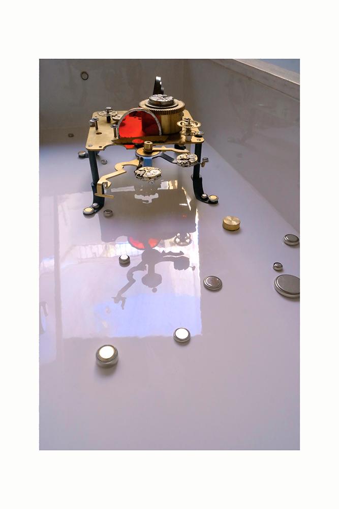 STAR-CLEANER B - 54'3x24x13'5 cm - Reciclaje y Ensamblado - Serie Animalario - Proyecto S.O.S.tenible - 2015 - Gata de Gorgos.