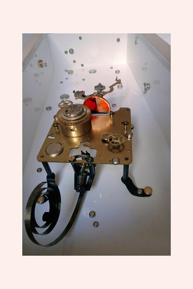 STAR-CLEANER C - 54'3x24x13'5 cm - Reciclaje y Ensamblado - Serie Animalario - Proyecto S.O.S.tenible - 2015 - Gata de Gorgos.